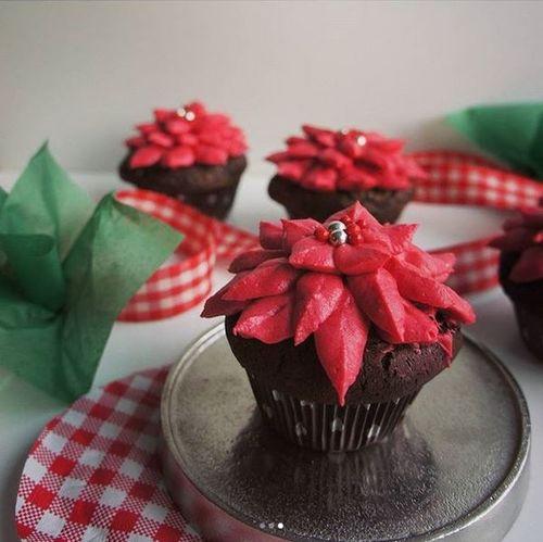 weihnachtliche Christstern-Cupcakes